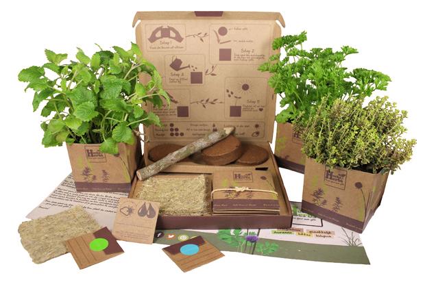 Hucks Herbs - Box