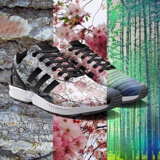 Adidas Instagram sneakers - DailyCappuccino