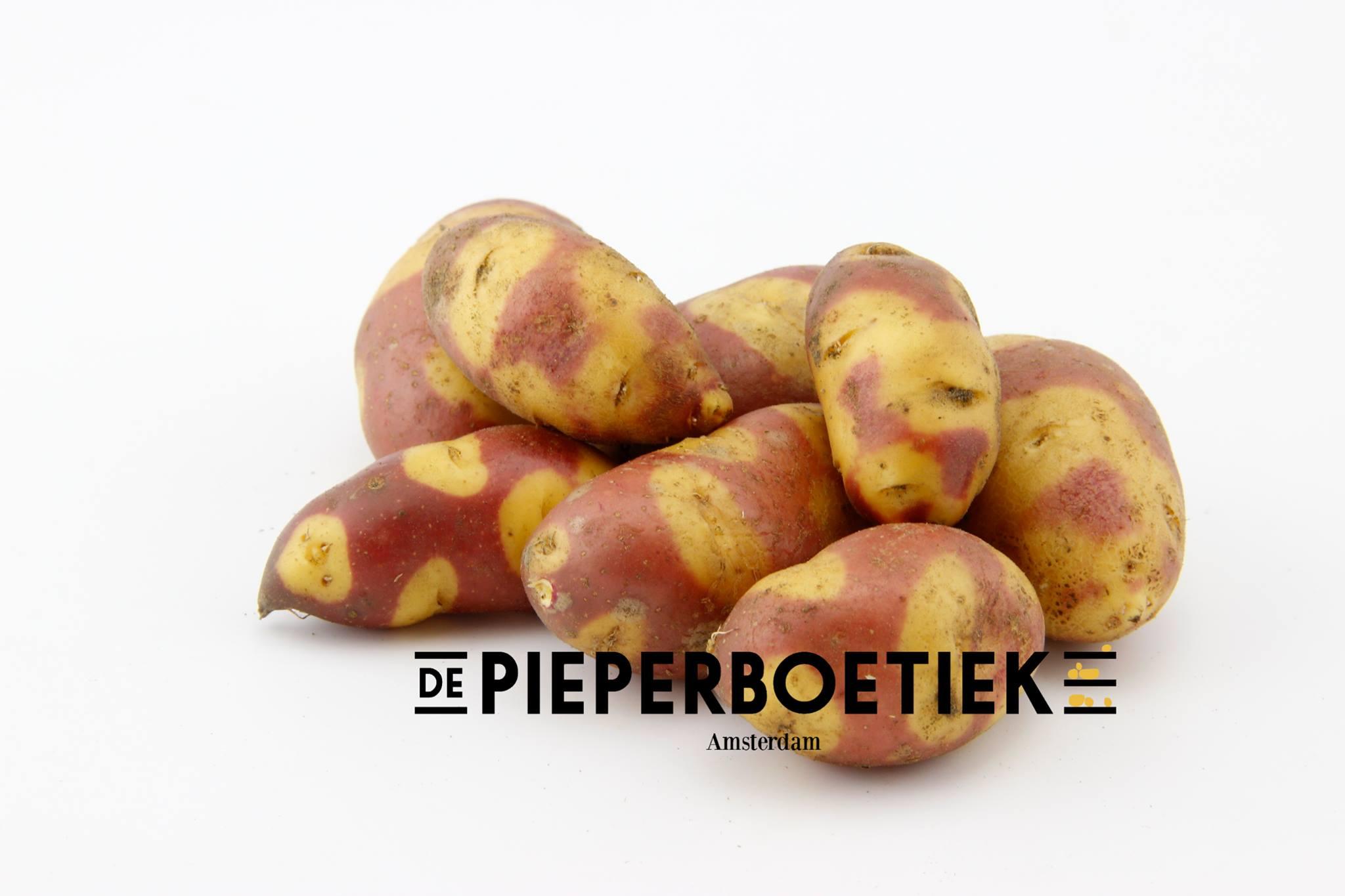 Pieperboetiek - Daily Cappuccino - Lifestyle Blog