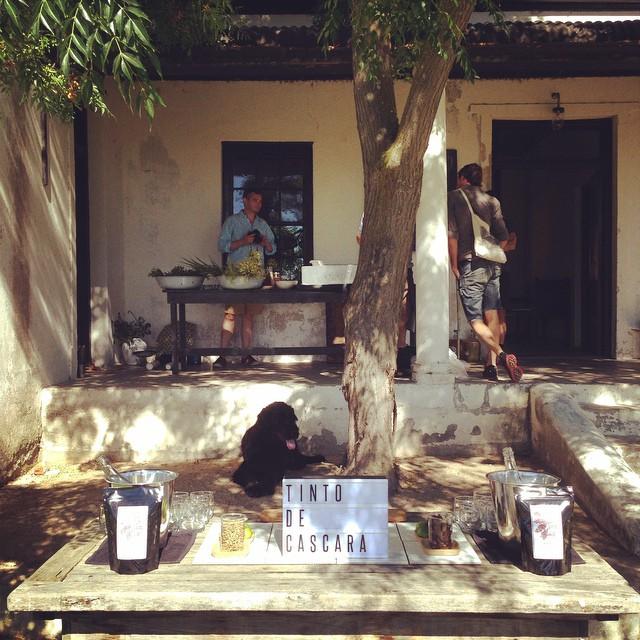 Tinto de Cascara - Daily Cappuccino -  Lifestyle Blog