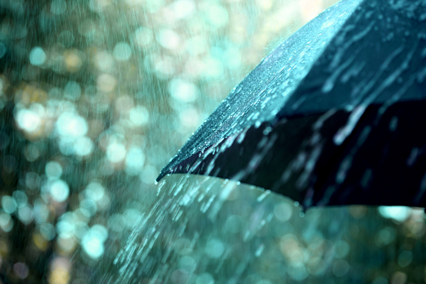 Kisha Umbrella - Paraplu - Daily Cappuccino - Lifestyle Blog