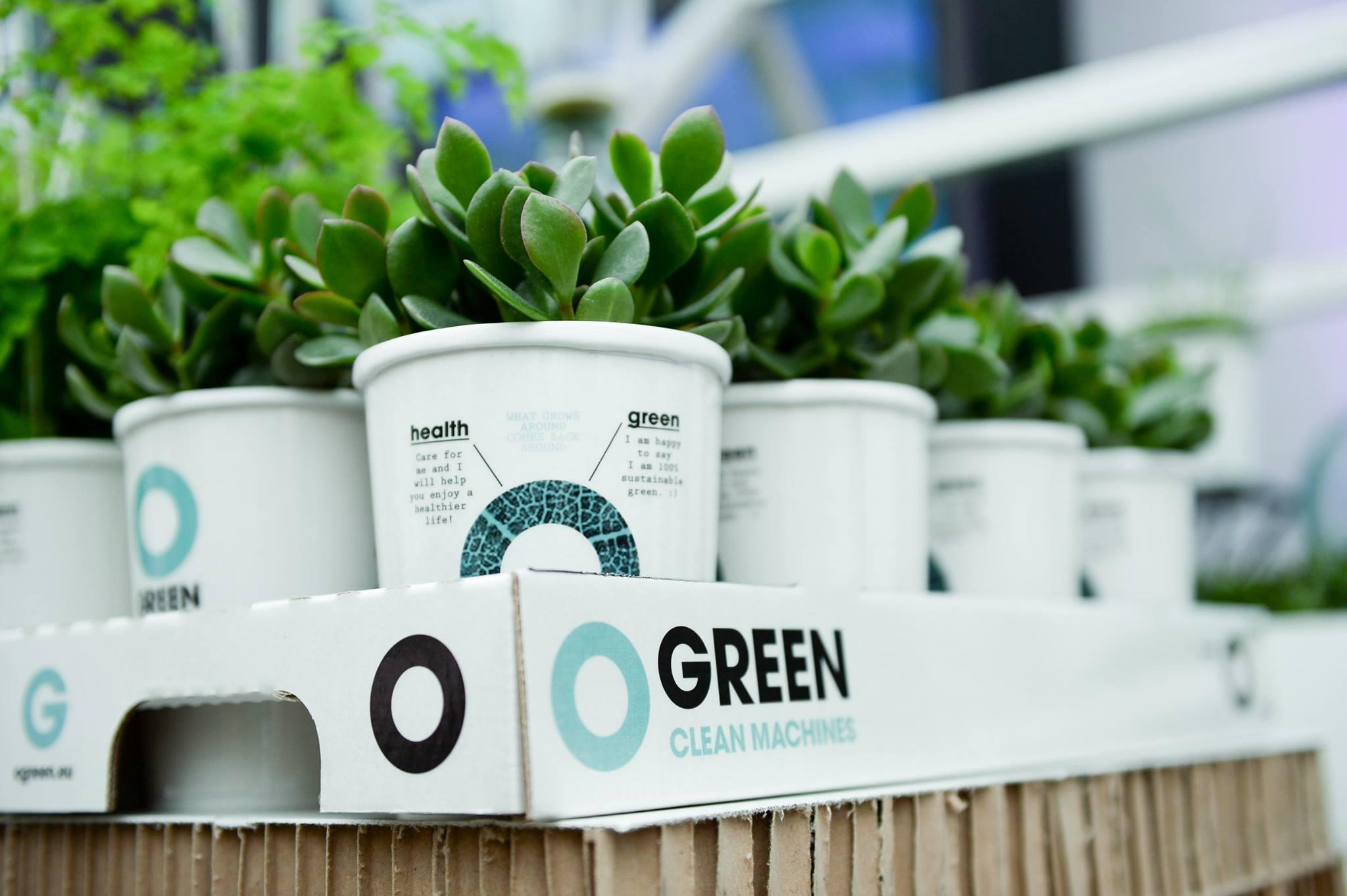 Planten Op Kantoor : Reinigende plant voor op kantoor lifestyle