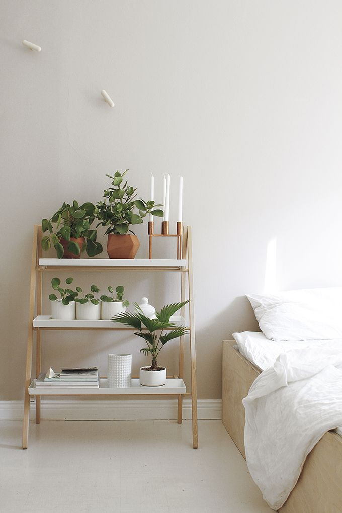 trend: groen in huis - daily cappuccino - lifestyle blog