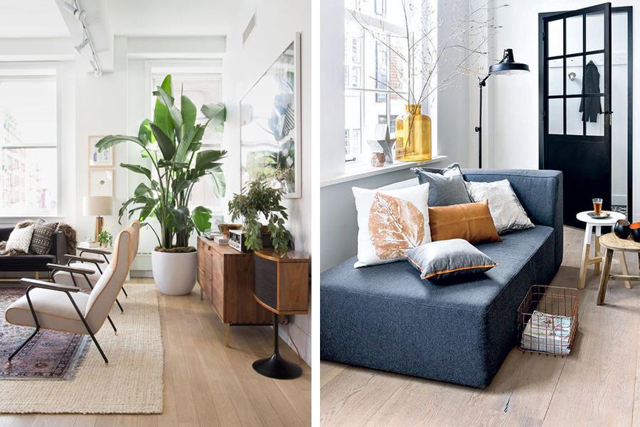 Planten In Woonkamer : Maak je woonkamer groener met leuke kamerplanten sfeer en living