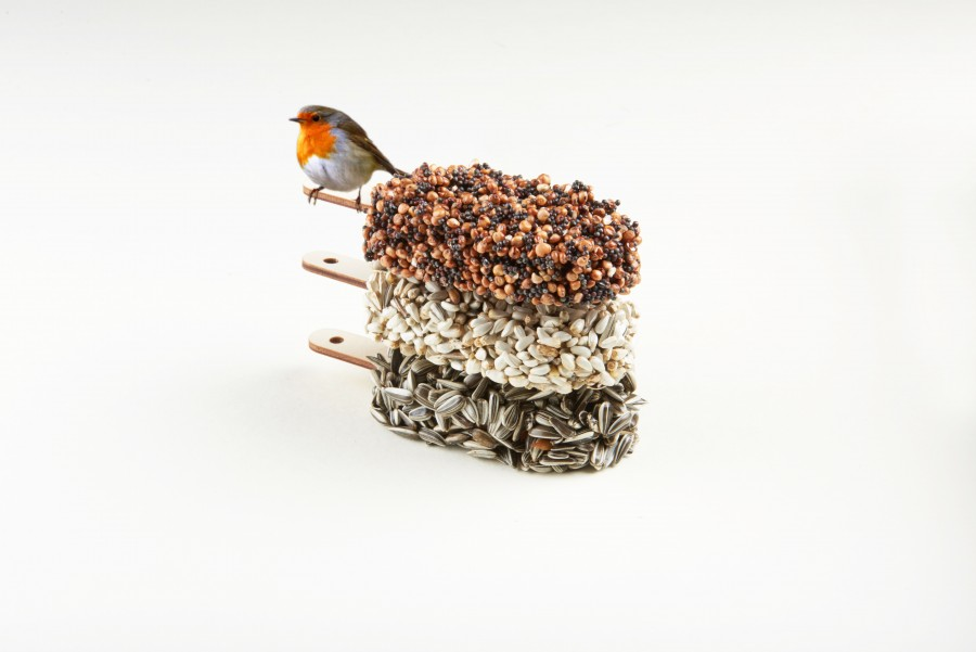 Desserts for Birds - Daily Cappuccino - Lifestyle Blog