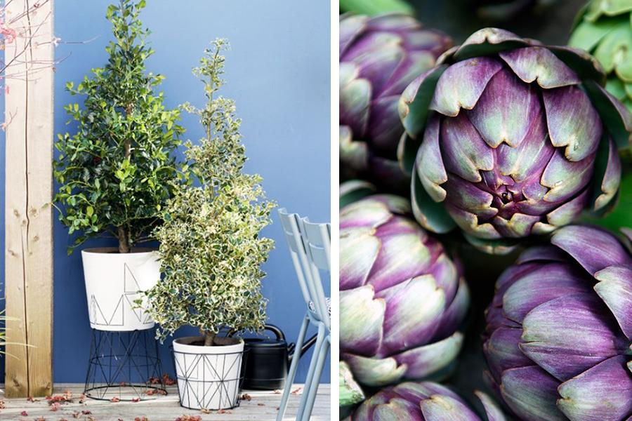 Een balkon voor alle seizoenen - Daily Cappuccino - Lifestyle Blog