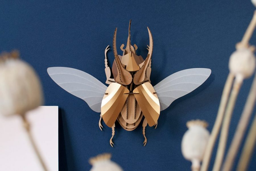 Design Bugs - Daily Cappuccino - Lifestyle Blog