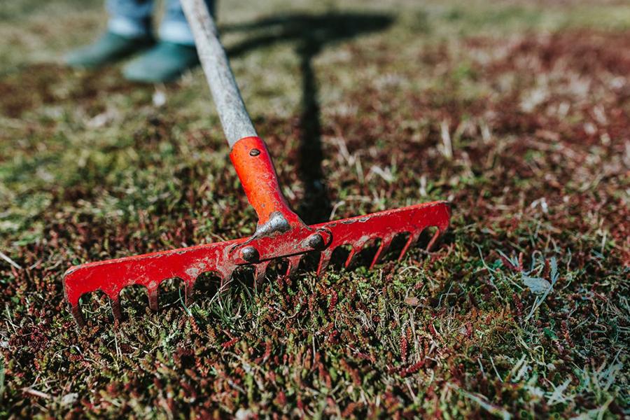 7 manieren om je tuin goedkoop zomer klaar te maken - Daily Cappuccino - Lifestyle Blog