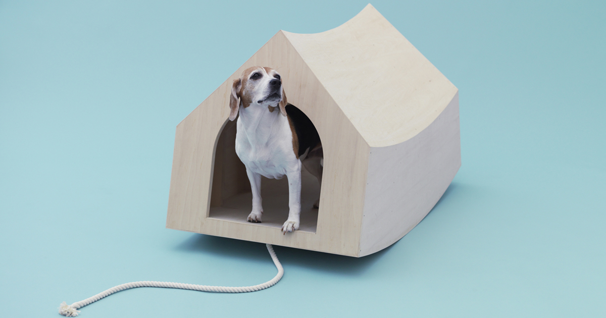 Architectonisch hoogstandje voor je hond - Architecture for Dogs - Daily Cappuccino - Lifestyle Blog