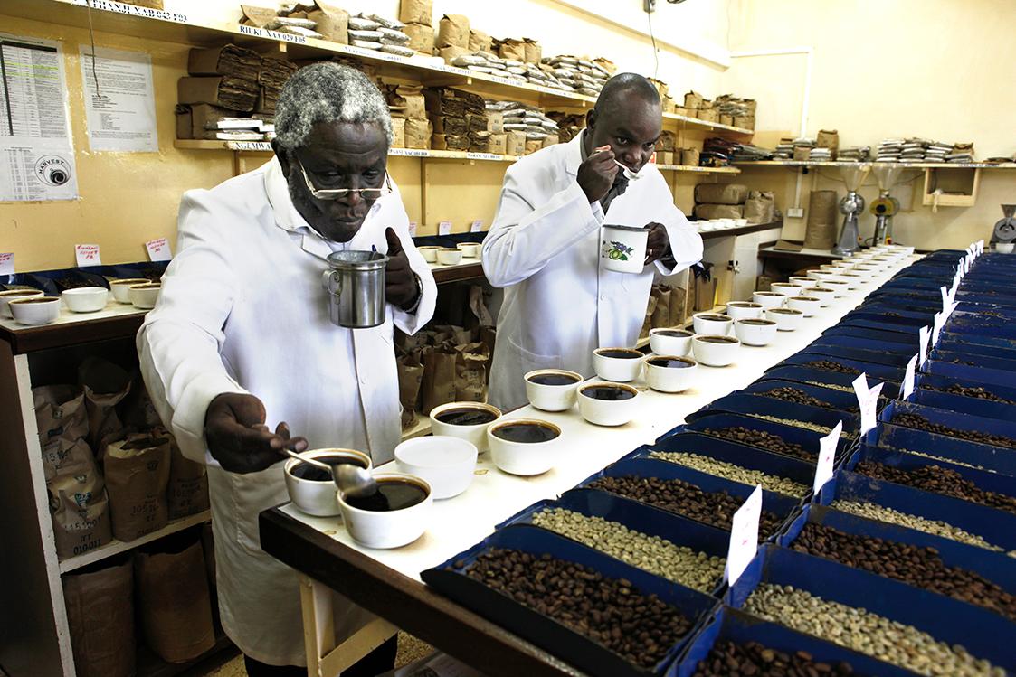 Een wereld zonder koffie...? - Solidaridad - Daily Cappuccino - Lifestyle Blog