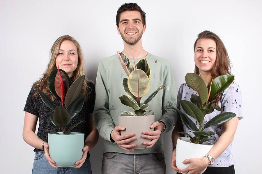 Een plantenzoeker die plant en klant met elkaar macht! - Plantsome - Daily Cappuccino - Lifestyle Blog