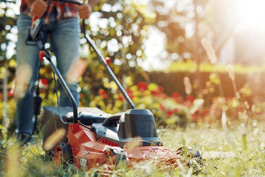 Zo maak je van je tuin een duurzame tuin