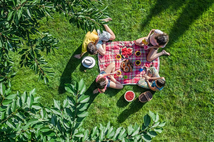 Incoming: lente – to do in je eigen tuin