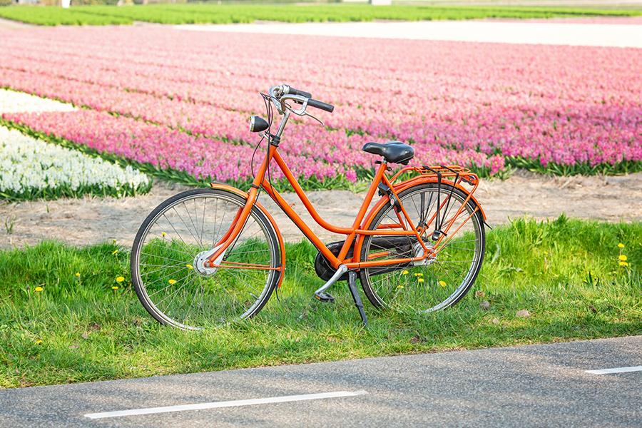De 5 mooiste fietsroutes om de lente te proeven
